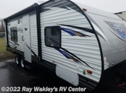 New 2017  Forest River Salem Cruise Lite 241QBXL by Forest River from Ray Wakley's RV Center in North East, PA
